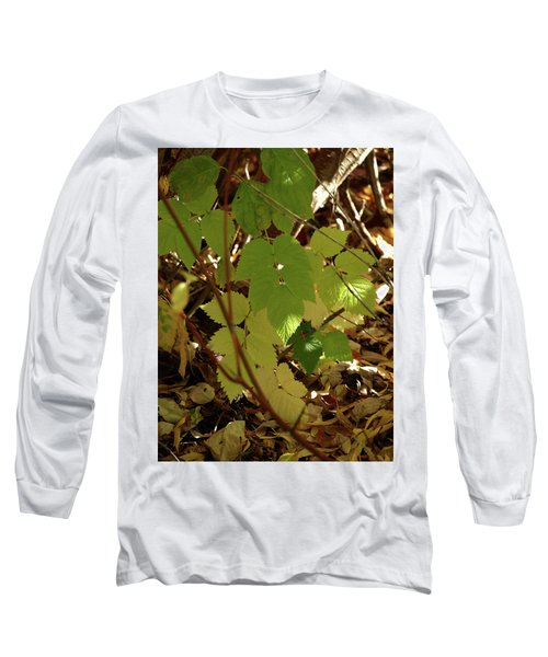 Long Sleeve T-Shirt featuring the photograph A Plant's Various Colors Of Fall by DeeLon Merritt