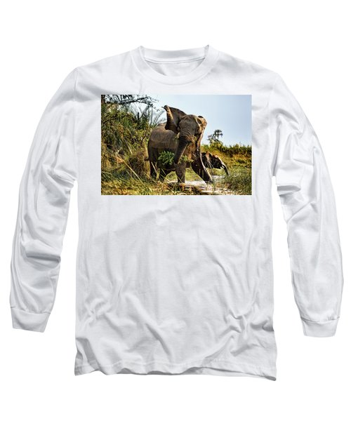 A Protective Mama Elephant With Calf  Long Sleeve T-Shirt