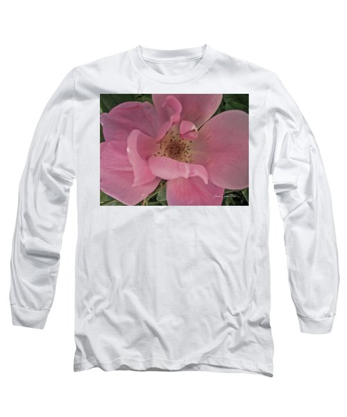 Long Sleeve T-Shirt featuring the photograph A Single Pink Rose by Joann Copeland-Paul
