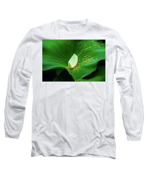 Abstract Leaves Of Green And Yellow Long Sleeve T-Shirt