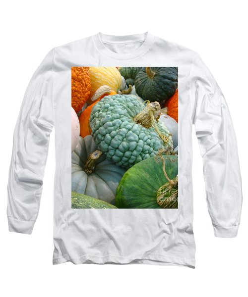 Abundant Harvest Long Sleeve T-Shirt by Cathy Dee Janes