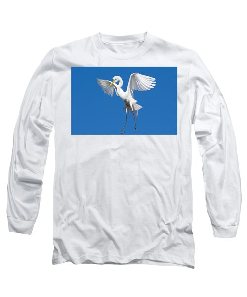 Aerial Ballet Long Sleeve T-Shirt by Kenneth Albin