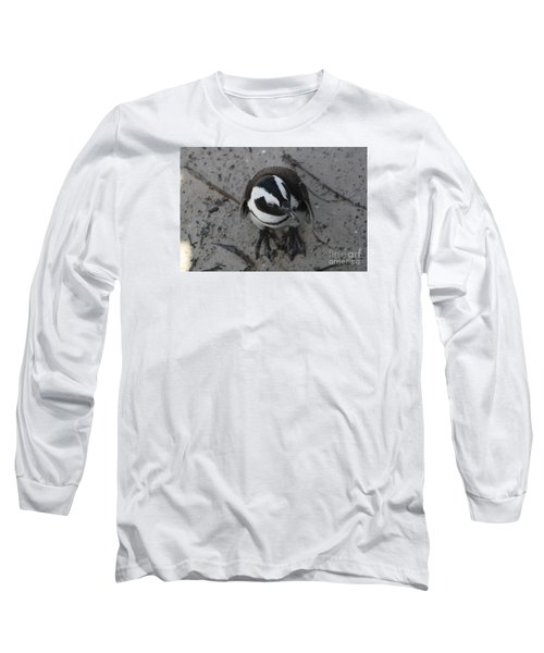 African Penguin Long Sleeve T-Shirt by Bev Conover