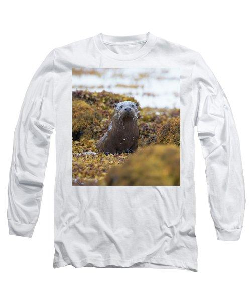 Alert Female Otter Long Sleeve T-Shirt