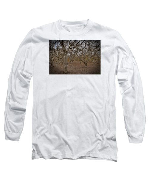 Almond Orchard Long Sleeve T-Shirt