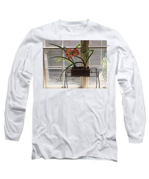 Long Sleeve T-Shirt featuring the photograph Amaryllis And Window by Nancy Kane Chapman