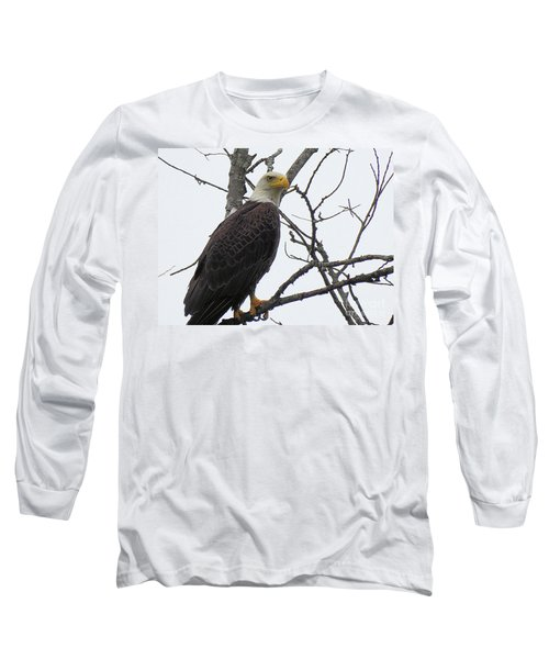 American Bald Eagle Pictures Long Sleeve T-Shirt by Scott Cameron
