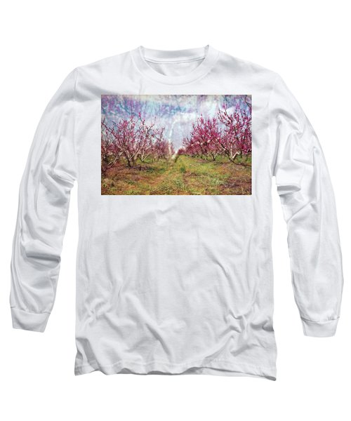 An Orchard In Blossom In The Golan Heights Long Sleeve T-Shirt