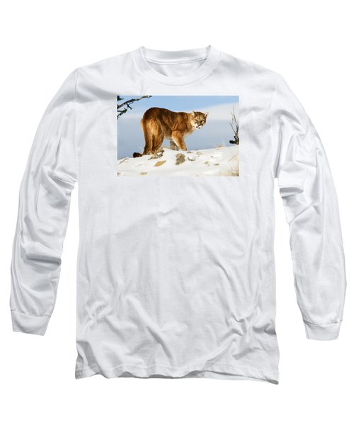 Angry Mountain Lion Long Sleeve T-Shirt