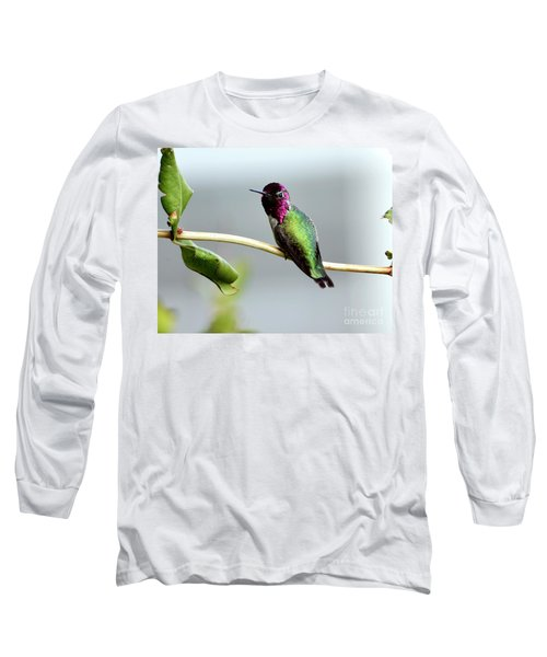 Anna's Hummingbird Long Sleeve T-Shirt