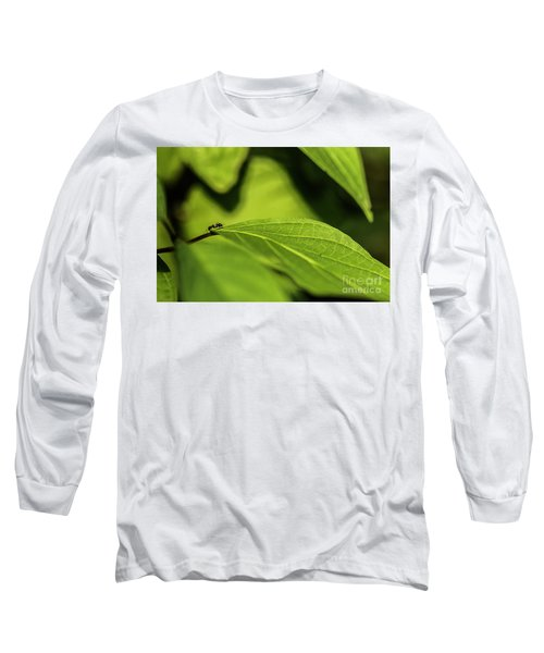 Long Sleeve T-Shirt featuring the photograph Ant Life by JT Lewis