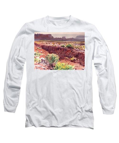 Arizona Arroyo Long Sleeve T-Shirt by Donald Maier