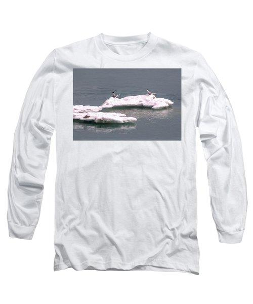 Arctic Terns On A Bergy Bit Long Sleeve T-Shirt
