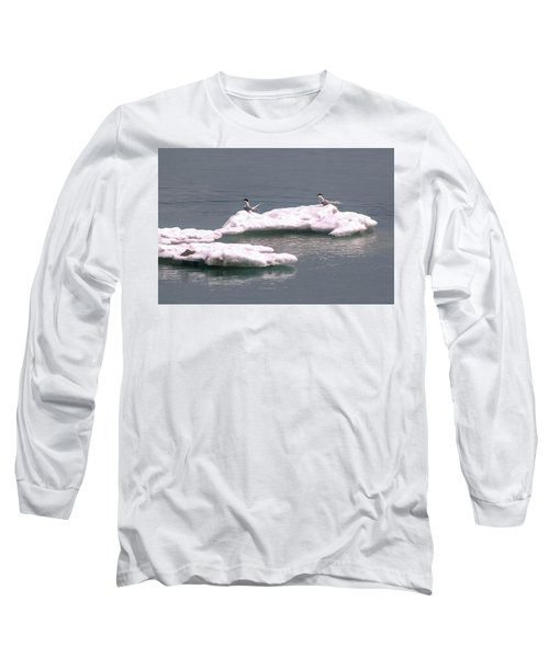 Arctic Terns On A Bergy Bit Long Sleeve T-Shirt