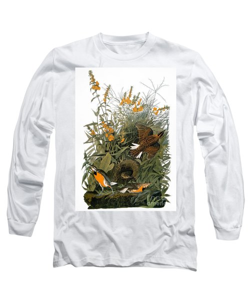Audubon: Meadowlark Long Sleeve T-Shirt by Granger