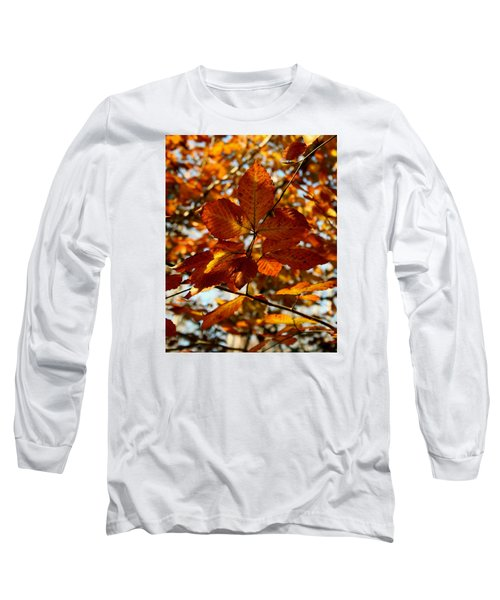 Autumn Leaves Long Sleeve T-Shirt by Karen Harrison