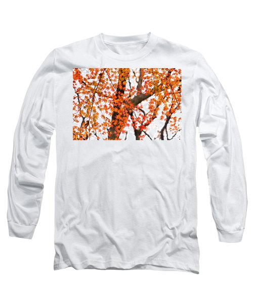 Autumn Red Leaves On A Tree   Long Sleeve T-Shirt