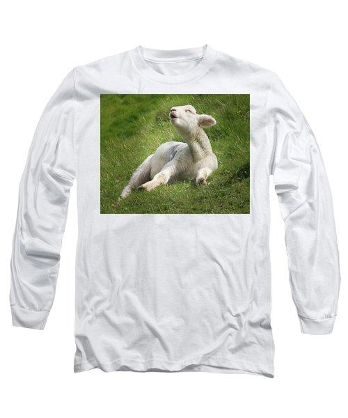 Avebury Lamb Long Sleeve T-Shirt