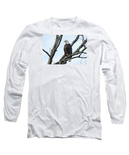 Bald Eagle 5 Long Sleeve T-Shirt by Steven Clipperton
