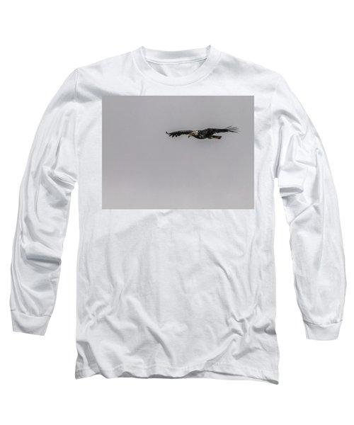 Bald Eagle Gliding Long Sleeve T-Shirt by Timothy Latta