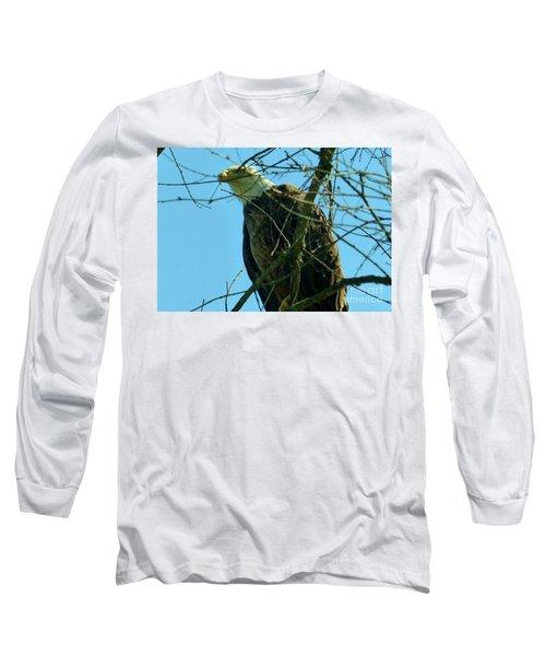 Bald Eagle Keeping Guard Long Sleeve T-Shirt