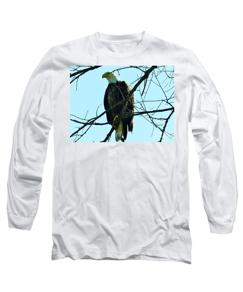 Bald Eagle Over The Root River Long Sleeve T-Shirt
