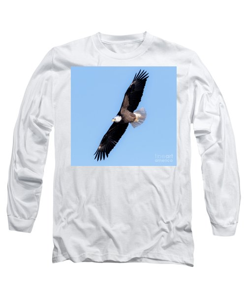 Bald Eagle Overhead  Long Sleeve T-Shirt