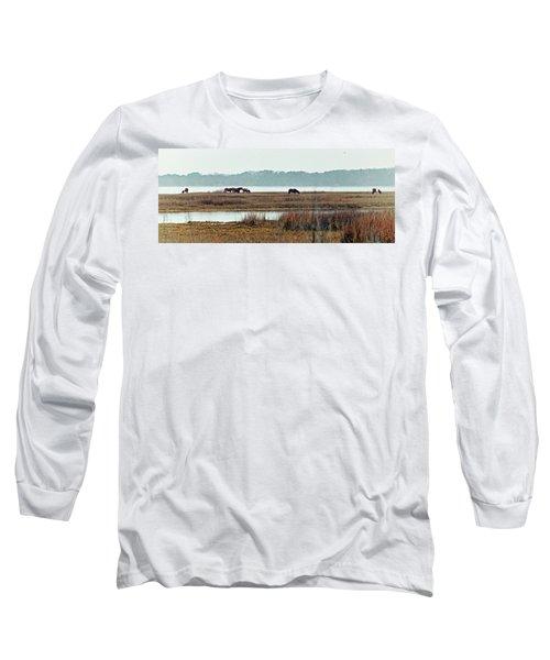 Band Of Wild Horses Along Sinepuxent Bay Long Sleeve T-Shirt
