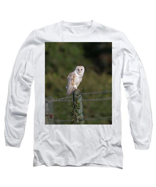Barn Owl On Ivy Post Long Sleeve T-Shirt