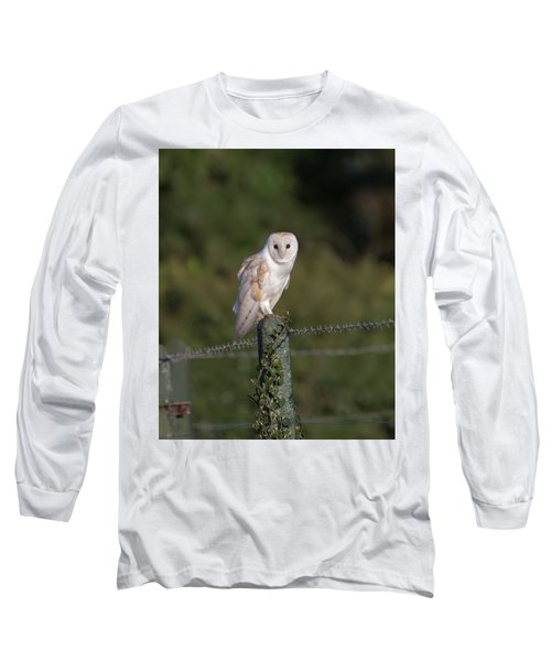 Barn Owl On Ivy Post Long Sleeve T-Shirt