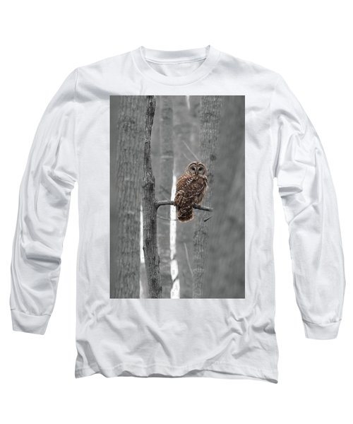 Barred Owl In Winter Woods #1 Long Sleeve T-Shirt