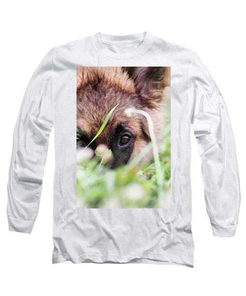 Bashful Long Sleeve T-Shirt by Stephanie Frey