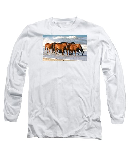Beach Ponies Long Sleeve T-Shirt