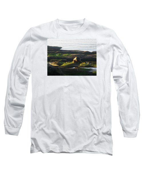 Beachcomber's Gold Long Sleeve T-Shirt by Anne Havard