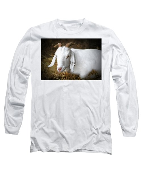 Long Sleeve T-Shirt featuring the photograph Bedded Down by Marion Johnson