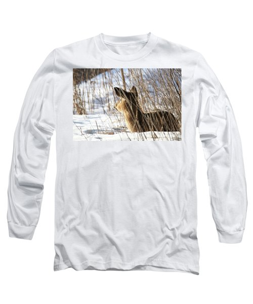 Bedded Fawn 2 Long Sleeve T-Shirt by Brook Burling