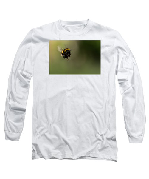 Bee Flying - View From Front Long Sleeve T-Shirt