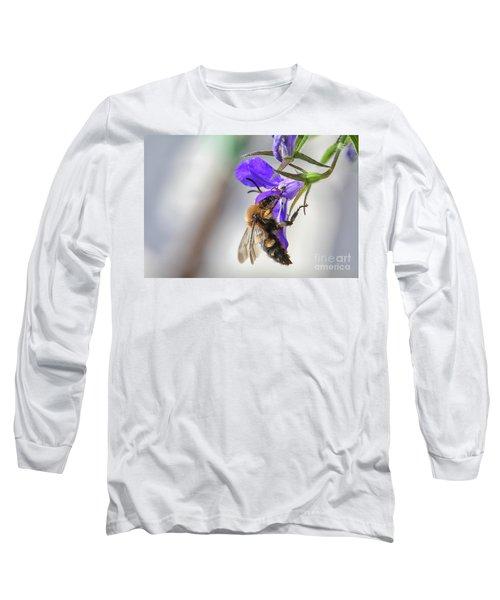 Bee On Purple Flower Long Sleeve T-Shirt