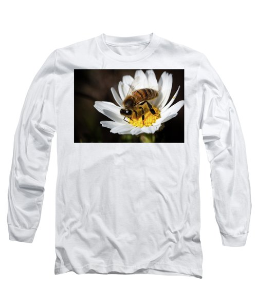 Long Sleeve T-Shirt featuring the photograph Bee On The Flower by Bruno Spagnolo