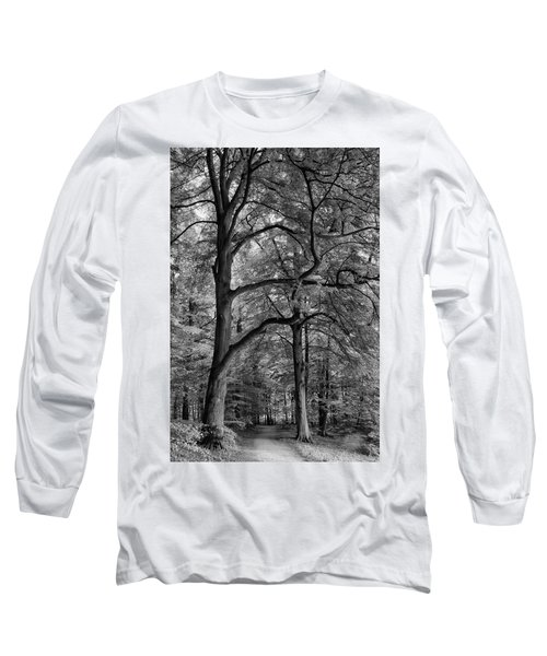 Beech Forest - 365-222 Long Sleeve T-Shirt