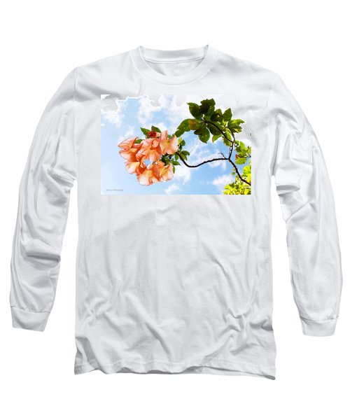 Bell Flowers In The Sky Long Sleeve T-Shirt