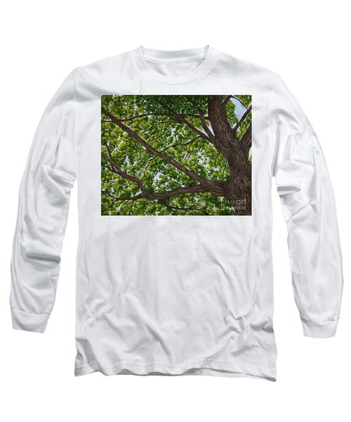 Beneath The Boughs Long Sleeve T-Shirt