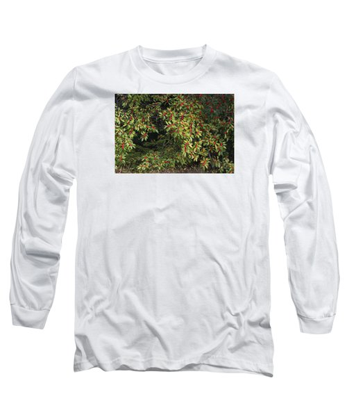 Long Sleeve T-Shirt featuring the photograph Berry Spread by Deborah  Crew-Johnson