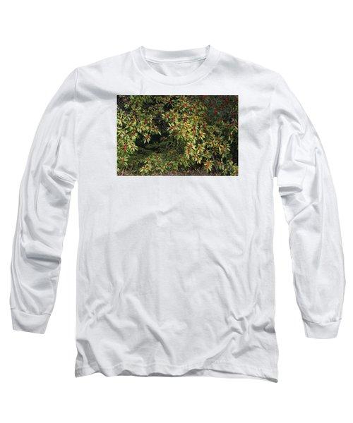 Berry Spread Long Sleeve T-Shirt by Deborah  Crew-Johnson