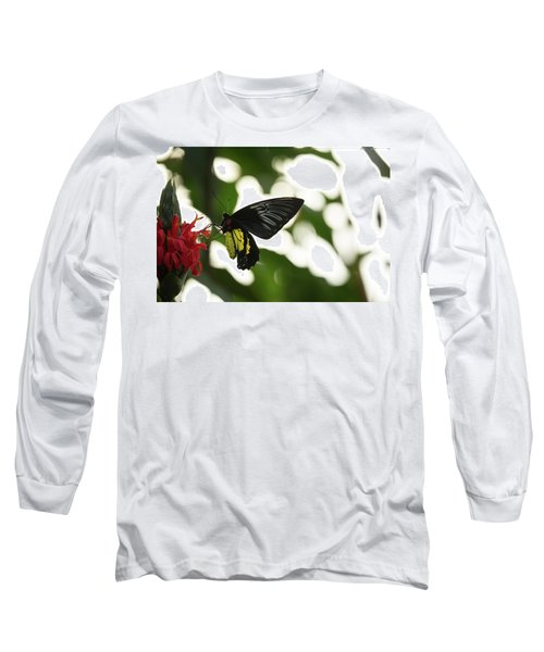 Long Sleeve T-Shirt featuring the photograph Big Butterfly by Brian Hale