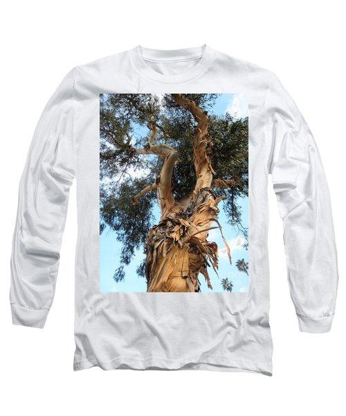 Big Ole Tree Long Sleeve T-Shirt