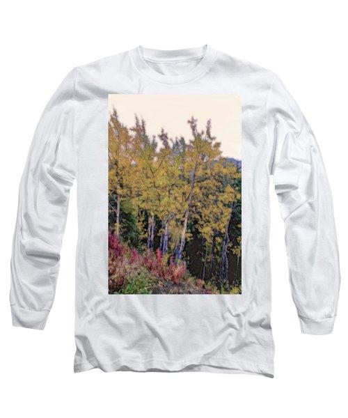 Birch Trees #2 Long Sleeve T-Shirt