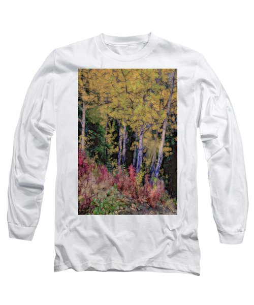 Birches At The Perch #1 Long Sleeve T-Shirt