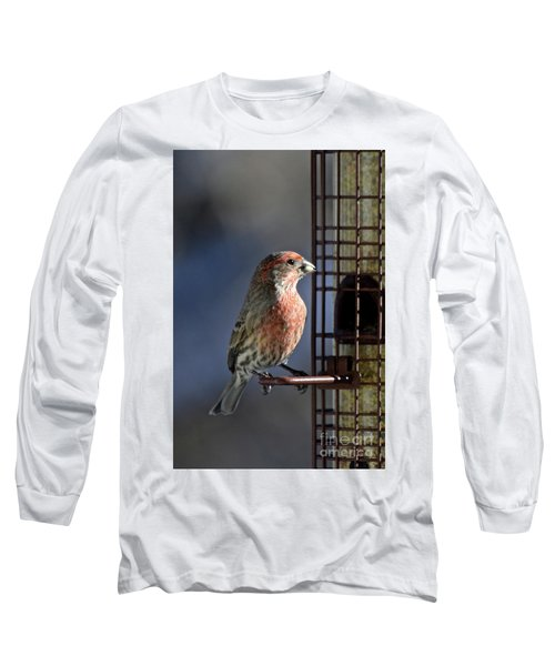 Bird Feeding In The Afternoon Sun Long Sleeve T-Shirt