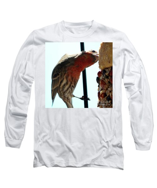 Bird Hits The Jackpot Long Sleeve T-Shirt